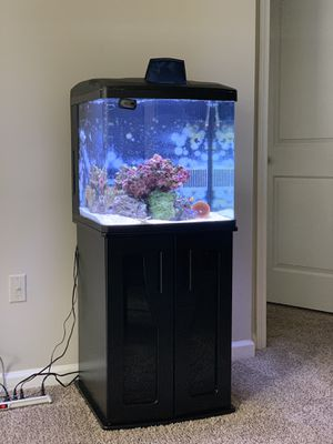 Fully Cycled 32 Gallon BioCube Saltwater tank plus stand for Sale in Atlanta, GA