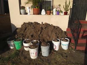 Free soil for Sale in Los Angeles, CA