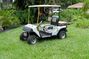 EZGO Golf Cart for Sale in Land O' Lakes, FL