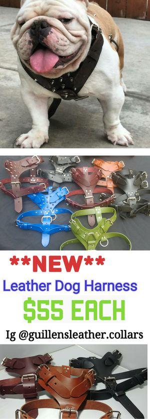 Leather harness for Sale in Rialto, CA