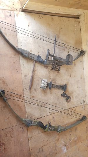 Bear compound bows for Sale in Bernville, PA