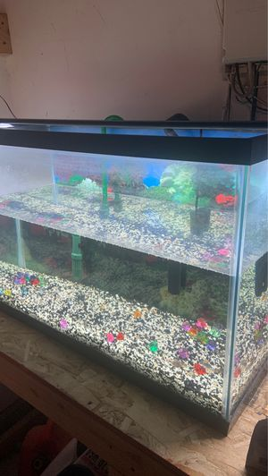 """30 gallon tank with all accessories! Ehiem filter and 48"""" LED light. for Sale in Temecula, CA"""
