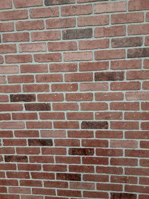 Brick bored for Sale in Pico Rivera, CA