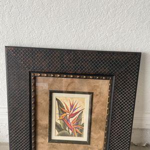 Frames for Sale in Davenport, FL
