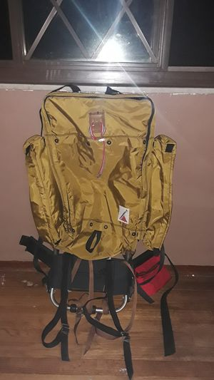 Vintage Cannondale hiker's backpack carrying bag mint rare for Sale in Wexford, PA