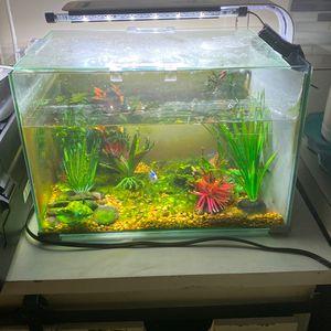 Nano Fish Tank Fresh Water Or Salt Water for Sale in Kissimmee, FL