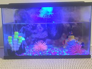 GloFish Aquarium for Sale in Bloomington, CA