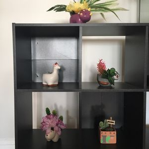 Cute Prestarted Decorative Planters for Sale in White Plains, NY