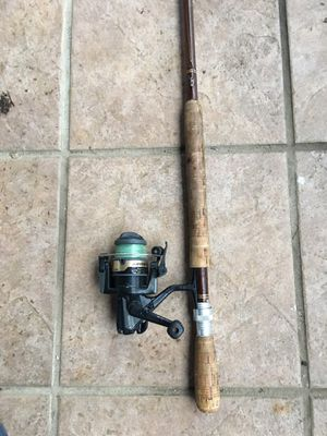 Custom made antique, one piece, 9' crappie or fly fishing rod with Daiwa spinning reel for Sale in Hendersonville, TN