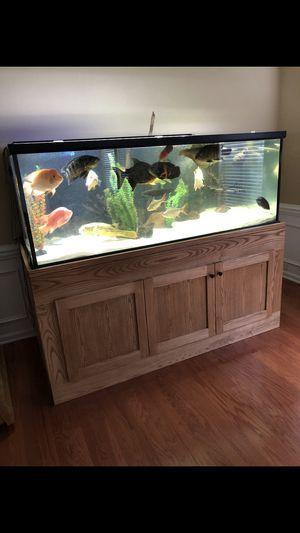 300 GAllON TANK for Sale in Charlotte, NC