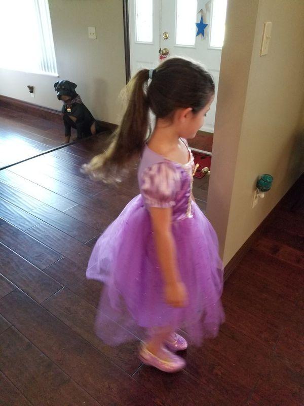 Disney Rapunzel dress