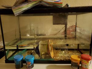 10 gallon top fin fish tank for Sale in Sacramento, CA