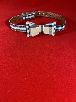 Dog collar for Sale in Lake Elsinore, CA