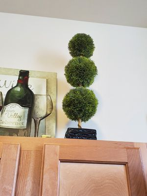 Plant and wall art for Sale in Philadelphia, PA