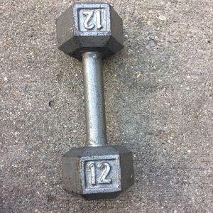 12 pound dumbbell for Sale in Hazel Park, MI