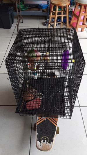 Cage for Bird for Sale in Kissimmee, FL