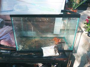 Aquaium / fishtank 20g for Sale in Fort Worth, TX