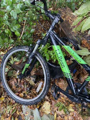 L.L. Bean Mountain Bike for Sale in Arlington, VA