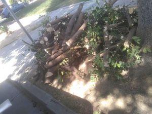 Free fire wood for Sale in Riverside, CA