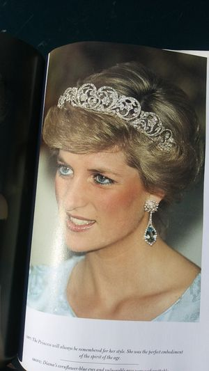 DIANA PRINCESS OF WHALES Book for Sale in Portage, MI
