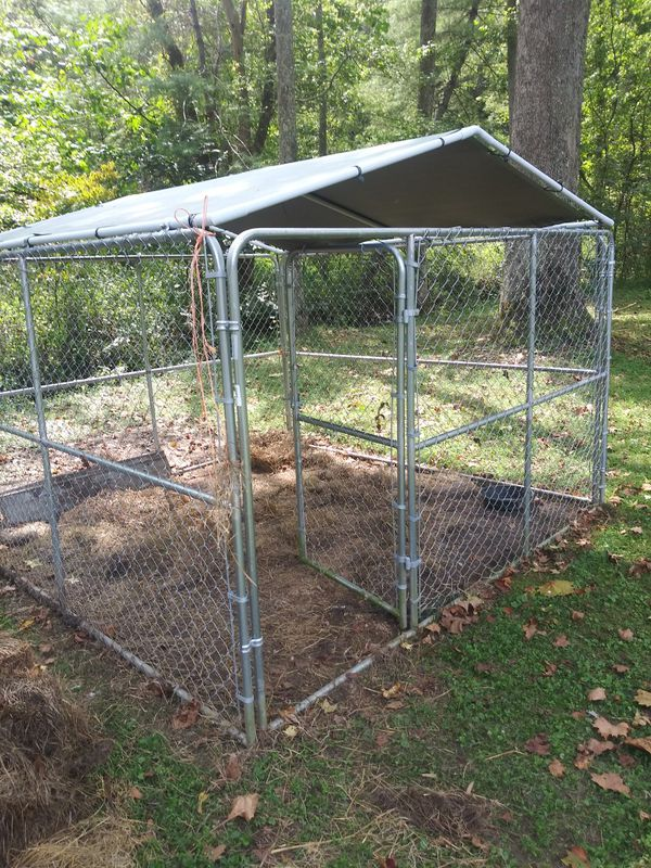 10×10 outdoor dog kennel with roof