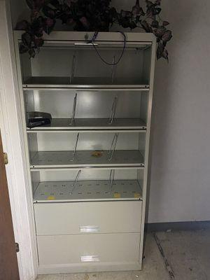 Literal file cabinet for Sale in Chicago, IL