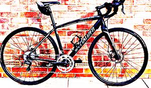 FREE bike sport for Sale in Cedar Grove, WV