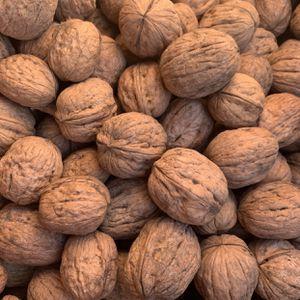 Walnuts for Sale in Sacramento, CA