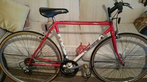 Bridgestone Road Bike for Sale in Wilton Manors, FL