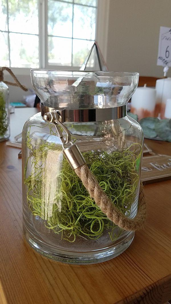 Glass Jar Terrarium For Sale In Irvine Ca Offerup