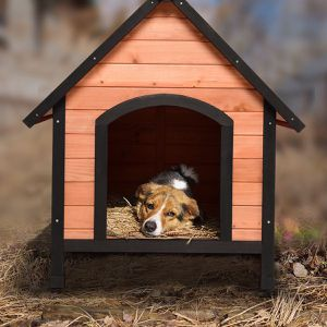 Wooden Dog or Cat Pet House for Sale in Los Angeles, CA