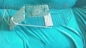 Cage for Sale in US