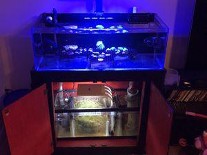 Saltwater aquarium for Sale in Scottsdale, AZ