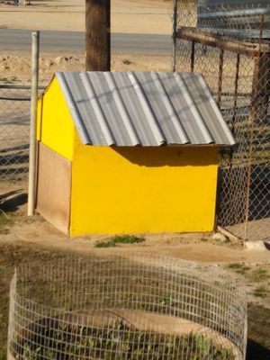 Dog house $100 for Sale in Bakersfield, CA