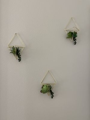 Gold wall decor with succulents for Sale in Dallas, TX