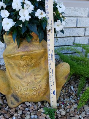 Clay frog pot for Sale in Frostproof, FL