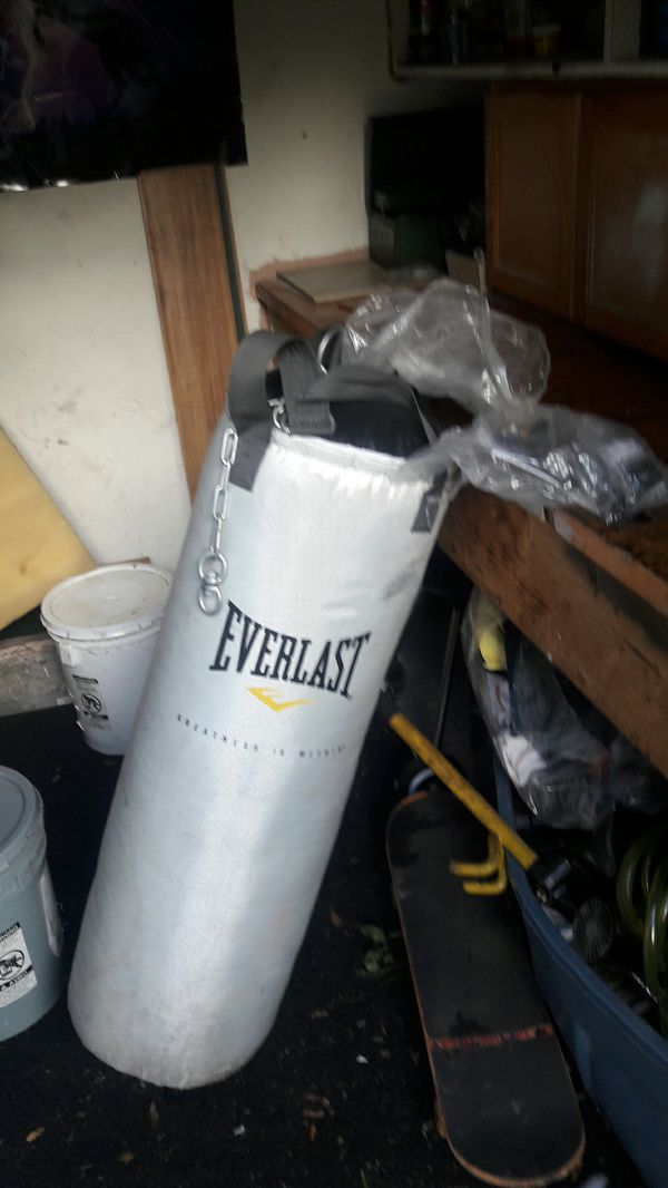 A speed bag and heavy bag