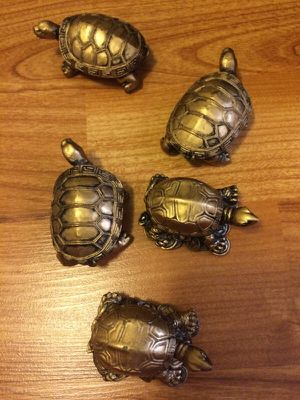 Small Good Luck Turtles (5) for Sale in Portland, OR