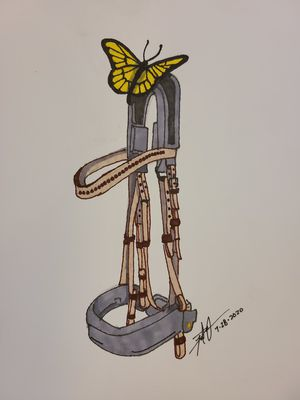 Butterfly and Bridle for Sale in Gilmer, TX
