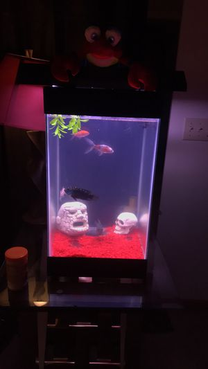 Fish tank comes with everything you see exept for light F..h included for Sale in Pittsburgh, PA