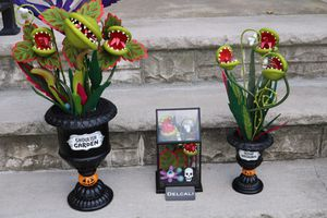 Target Hyde and eek ghoulish garden trio! Blood succulent , terrarium and ghoulish garden for Sale in Lodi, NJ