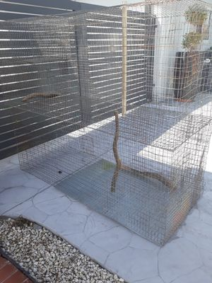 Bird cage,parrot,jaula for Sale in Miami, FL
