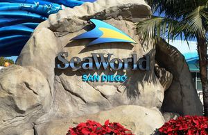 SeaWorld for Sale in San Diego, CA