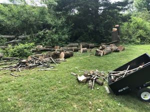 Free Fire Wood for Sale in Franklin Township, NJ