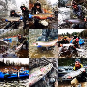 Certificate for guided steelhead trips for Sale in Gresham, OR
