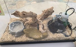 Basic Necessity Large Snake SetUp for Sale in Mission Viejo, CA