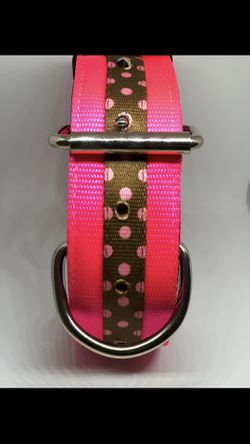 2 Inch 4 ply dog collar 15-22 inch neck size for Sale in Morriston,  FL