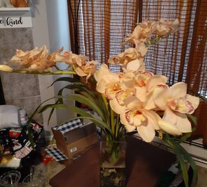 Imitation orchid plant for Sale in Hillsboro, OR