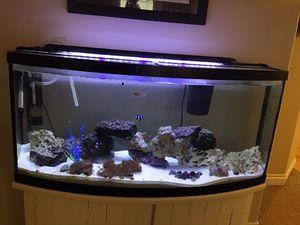 75 gallon saltwater fish tank/ aquarium for Sale in Twin Falls, ID