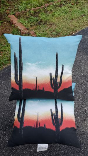 Outdoor Desert Themed Pillows (2) for Sale in Cumberland, VA